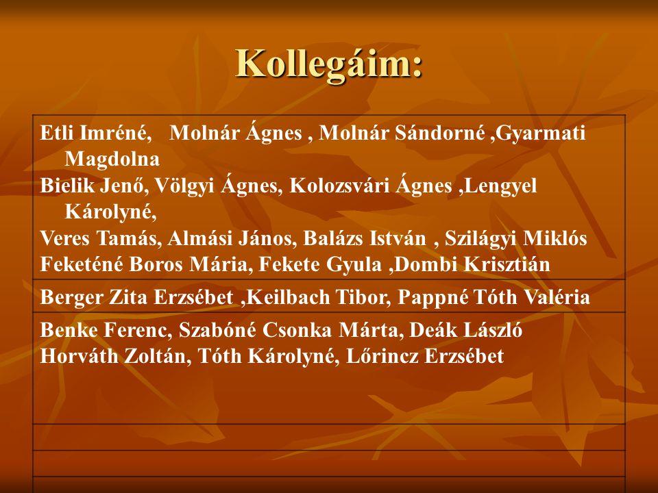 Kollegáim: Etli Imréné, Molnár Ágnes , Molnár Sándorné ,Gyarmati Magdolna. Bielik Jenő, Völgyi Ágnes, Kolozsvári Ágnes ,Lengyel Károlyné,