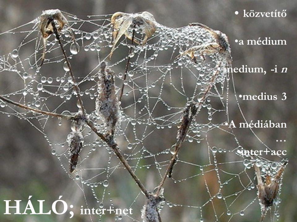 HÁLÓ; inter+net közvetítő a médium medium, -i n medius 3 A médiában …