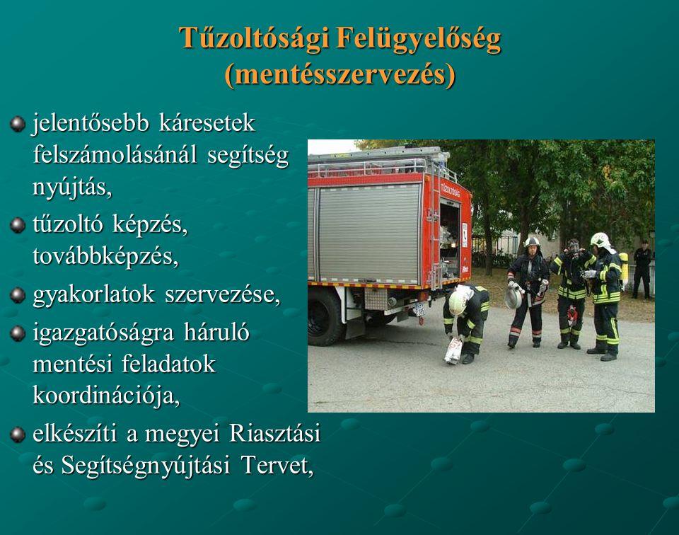 Tűzoltósági Felügyelőség