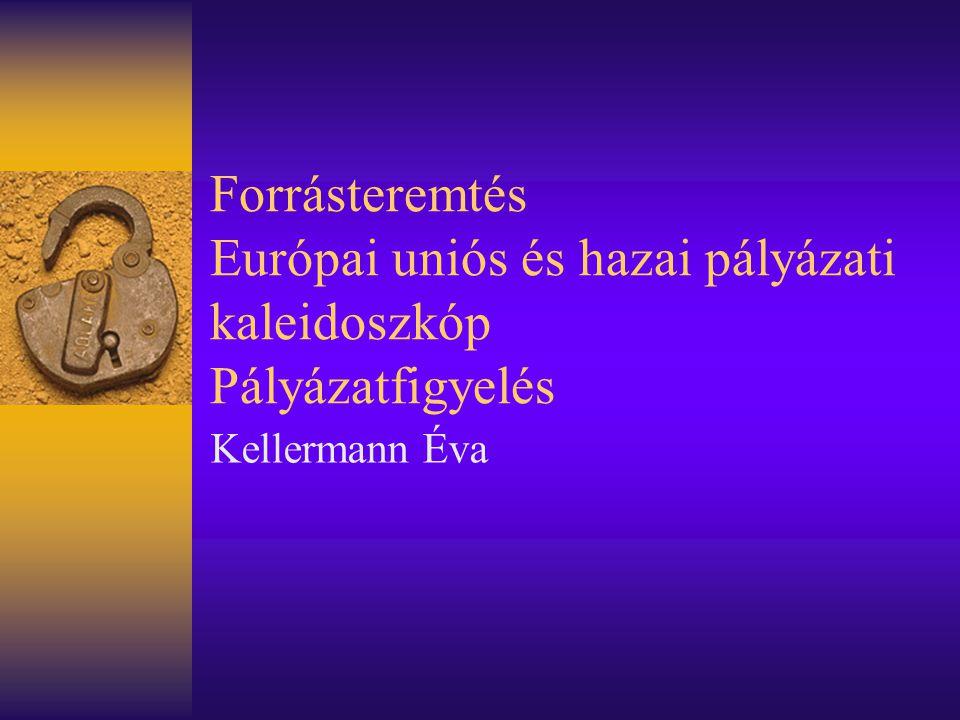 Forrásteremtés Európai uniós és hazai pályázati kaleidoszkóp Pályázatfigyelés