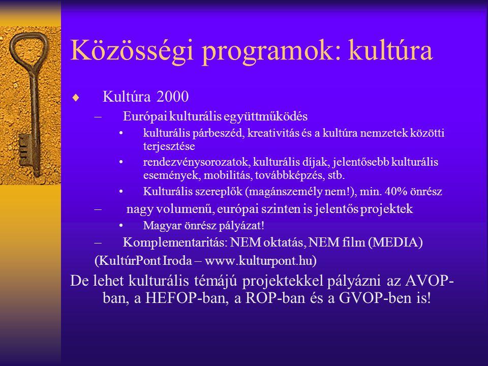 Közösségi programok: kultúra