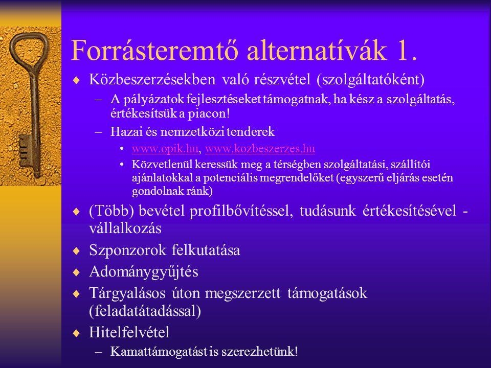 Forrásteremtő alternatívák 1.