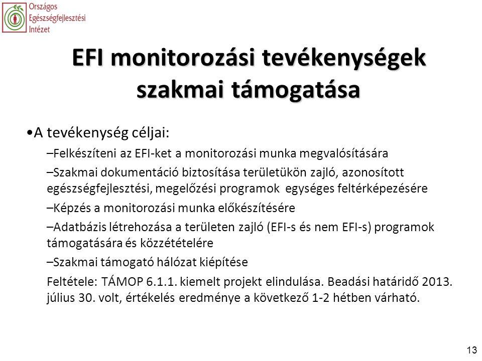 EFI monitorozási tevékenységek szakmai támogatása