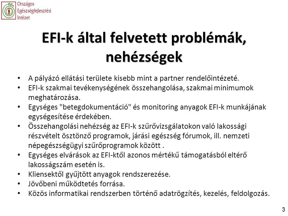 EFI-k által felvetett problémák, nehézségek