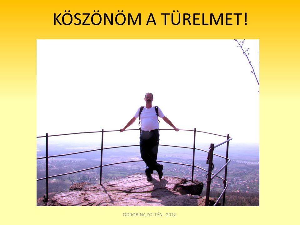 KÖSZÖNÖM A TÜRELMET! ODROBINA ZOLTÁN - 2012.