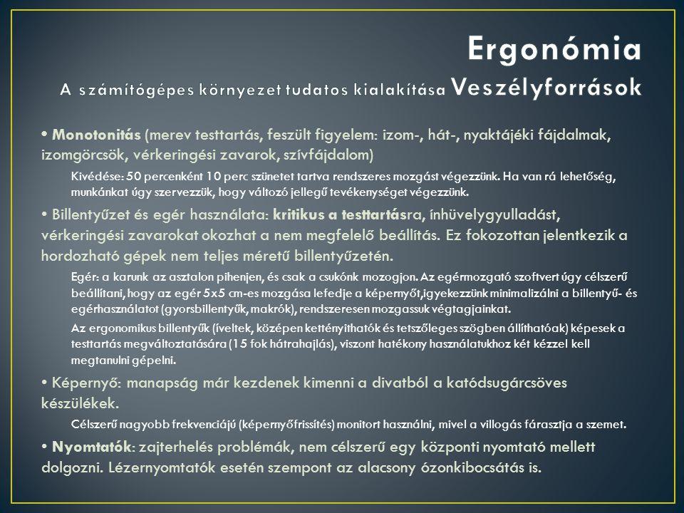 Ergonómia A számítógépes környezet tudatos kialakítása Veszélyforrások