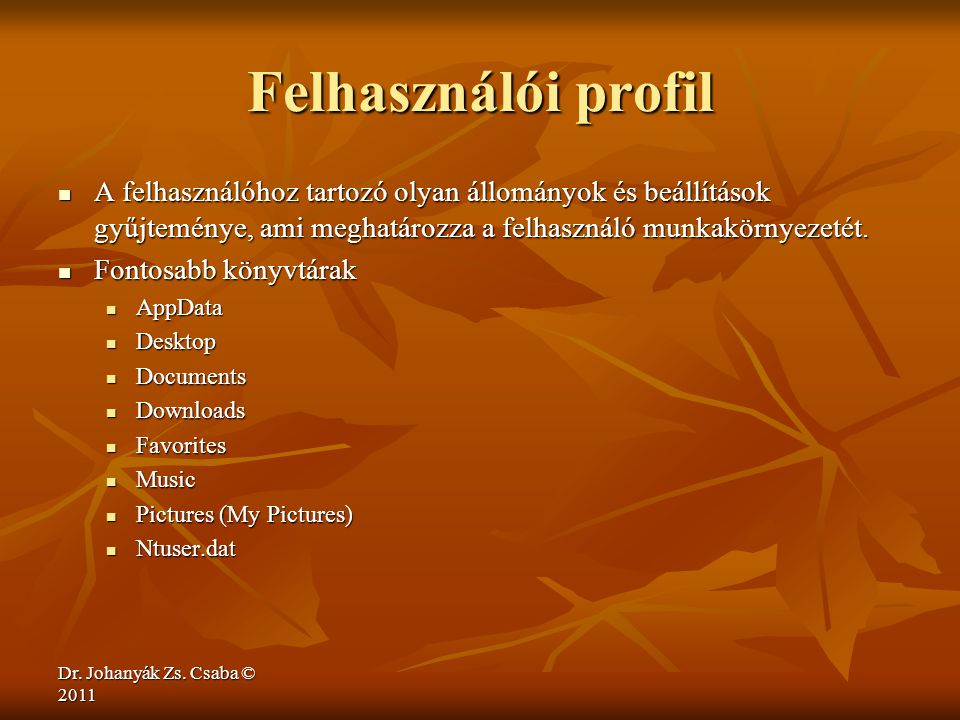 Felhasználói profil A felhasználóhoz tartozó olyan állományok és beállítások gyűjteménye, ami meghatározza a felhasználó munkakörnyezetét.