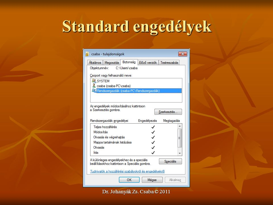 Standard engedélyek Dr. Johanyák Zs. Csaba © 2011