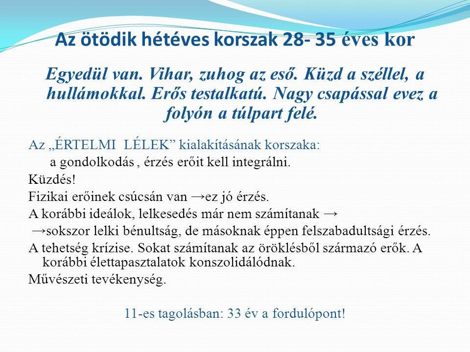 Az ötödik hétéves korszak 28- 35 éves kor