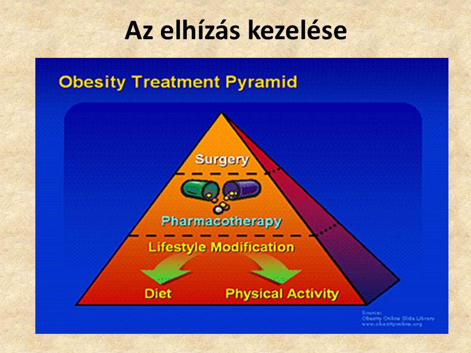 Az elhízás kezelése