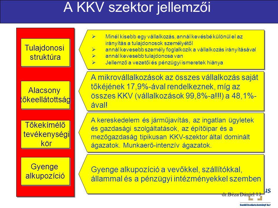A KKV szektor jellemzői