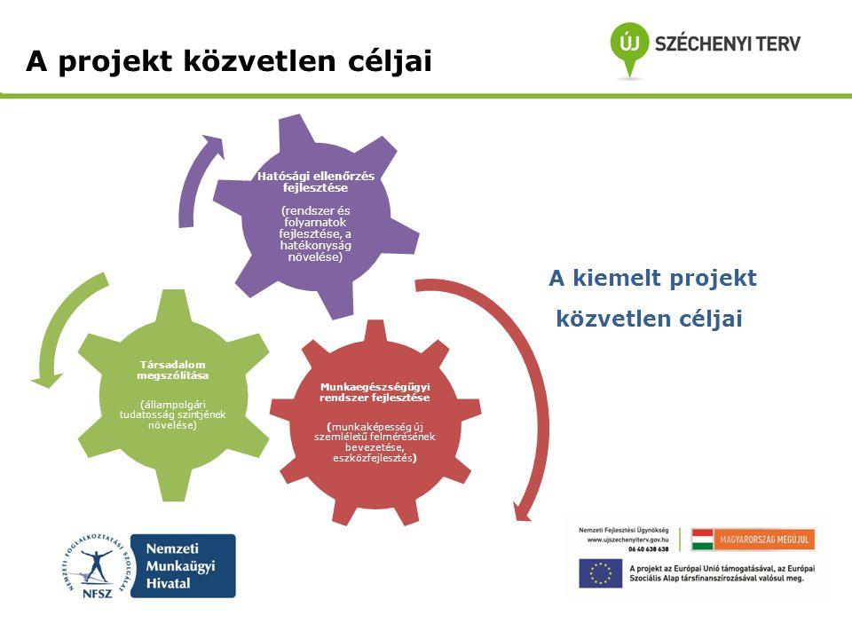 A projekt közvetlen céljai