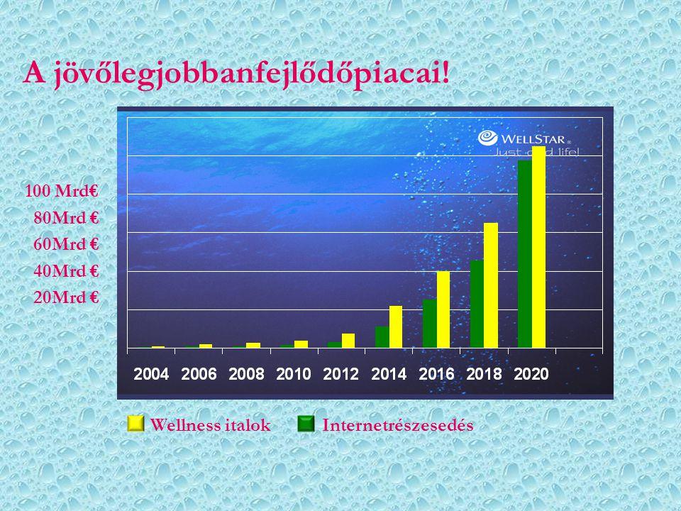 A jövőlegjobbanfejlődőpiacai!
