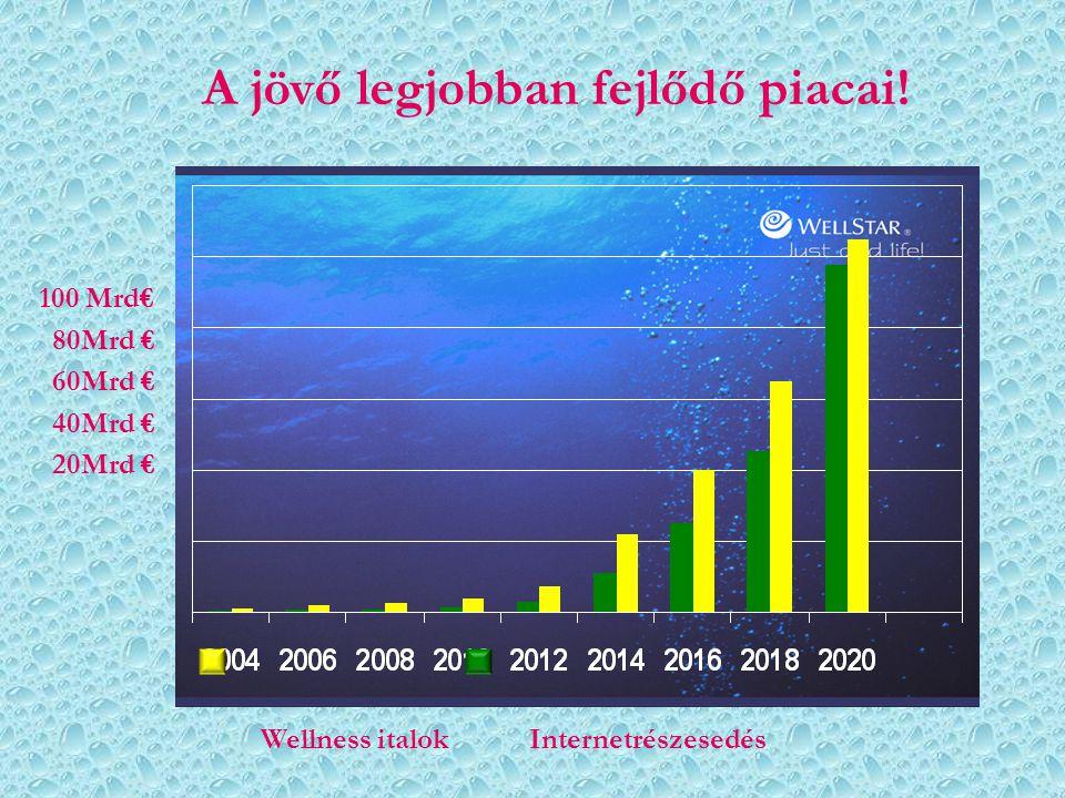 A jövő legjobban fejlődő piacai!