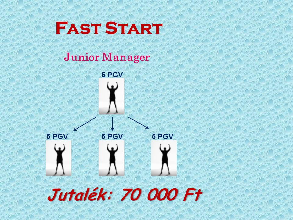 Fast Start Junior Manager 5 PGV 5 PGV 5 PGV 5 PGV Jutalék: 70 000 Ft