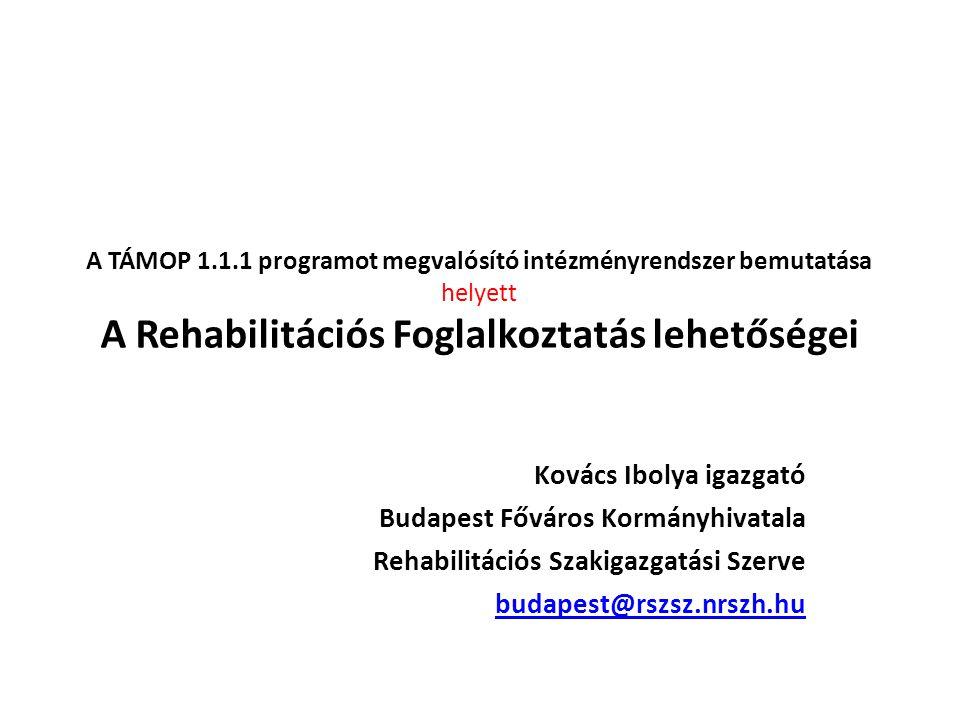 A Rehabilitációs Foglalkoztatás lehetőségei