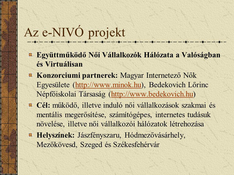 Az e-NIVÓ projekt Együttműködő Női Vállalkozók Hálózata a Valóságban és Virtuálisan.