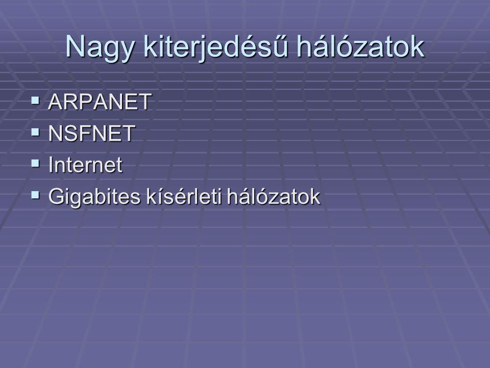 Nagy kiterjedésű hálózatok
