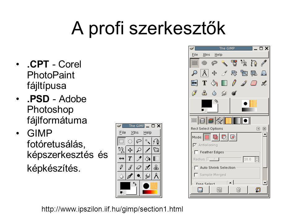 A profi szerkesztők .CPT - Corel PhotoPaint fájltípusa