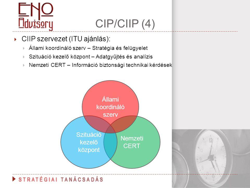 CIP/CIIP (4) CIIP szervezet (ITU ajánlás): Állami koordináló szerv