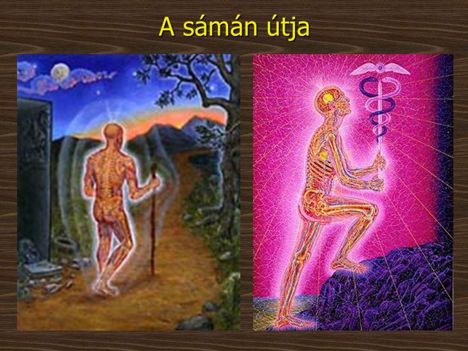 A sámán útja