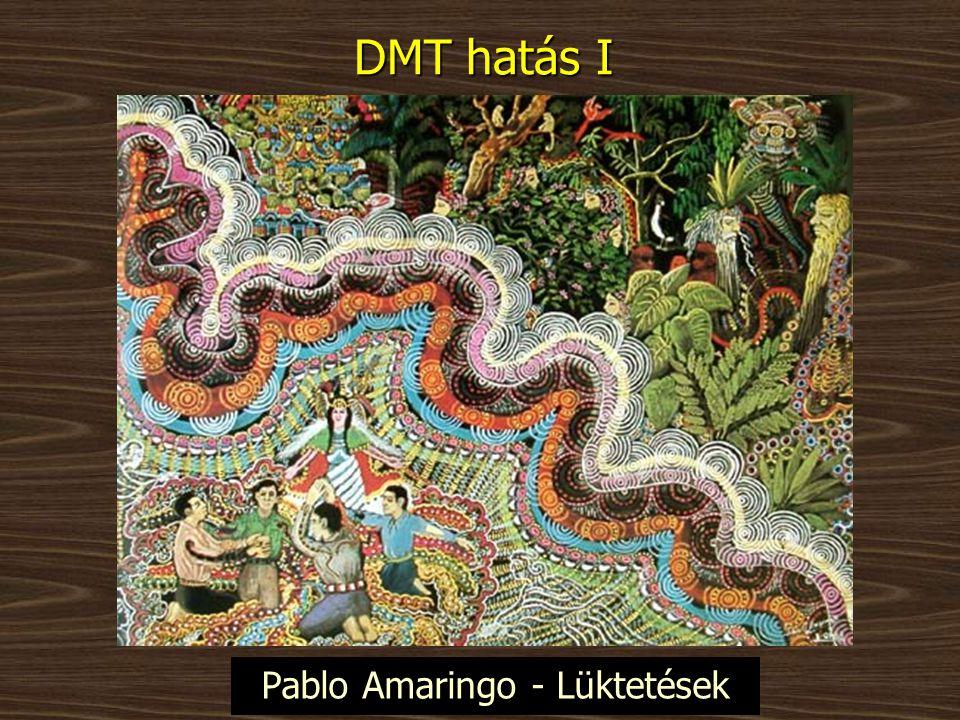 Pablo Amaringo - Lüktetések