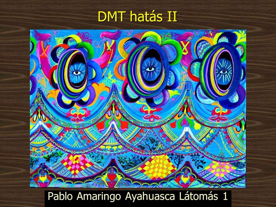 Pablo Amaringo Ayahuasca Látomás 1