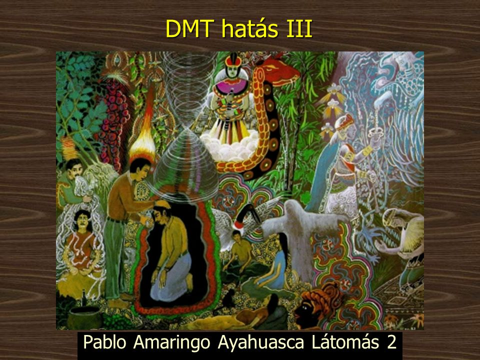 Pablo Amaringo Ayahuasca Látomás 2