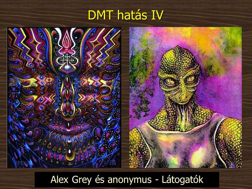 Alex Grey és anonymus - Látogatók