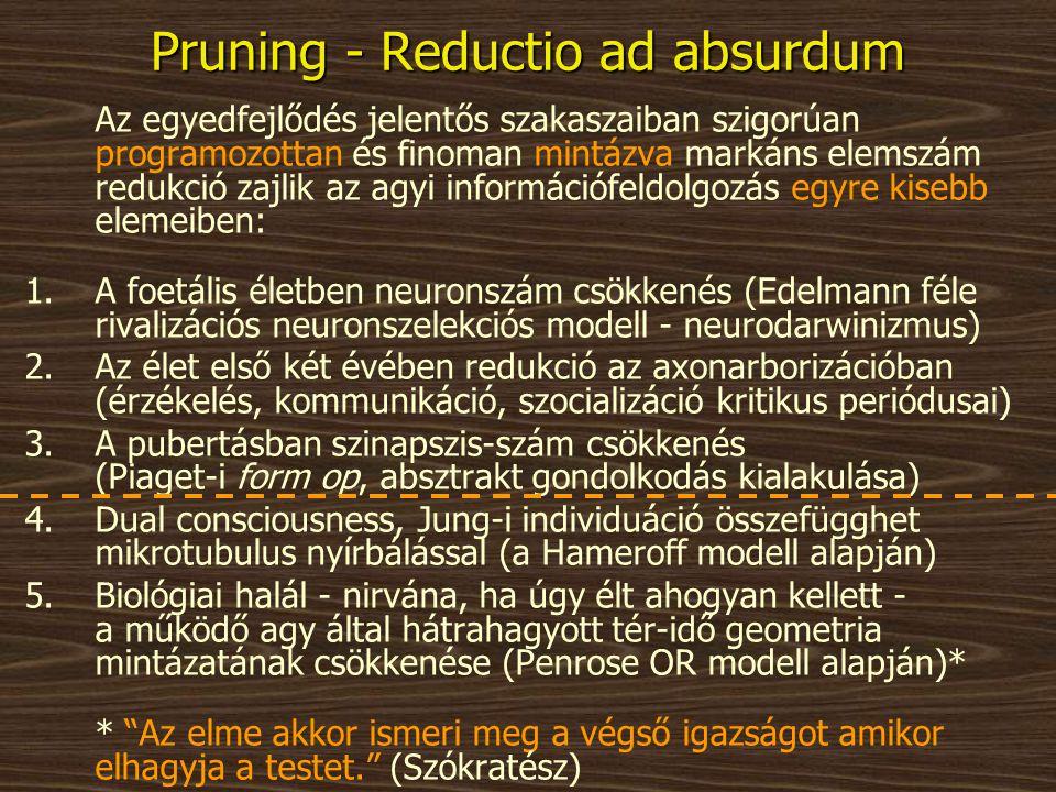 Pruning - Reductio ad absurdum