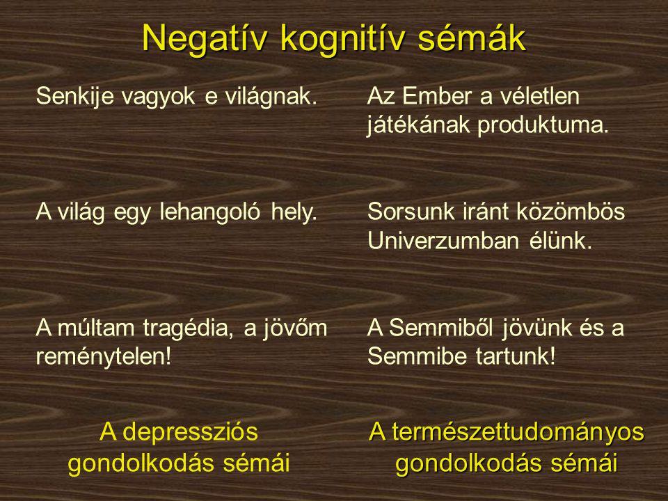Negatív kognitív sémák