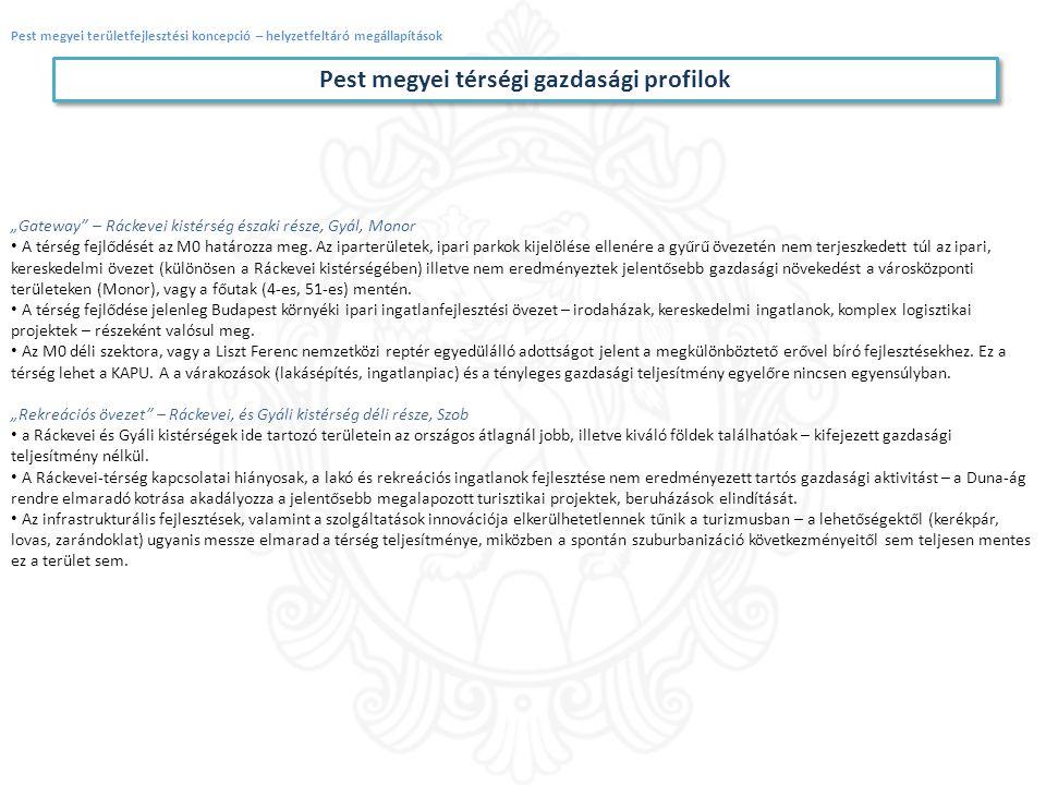Pest megyei térségi gazdasági profilok