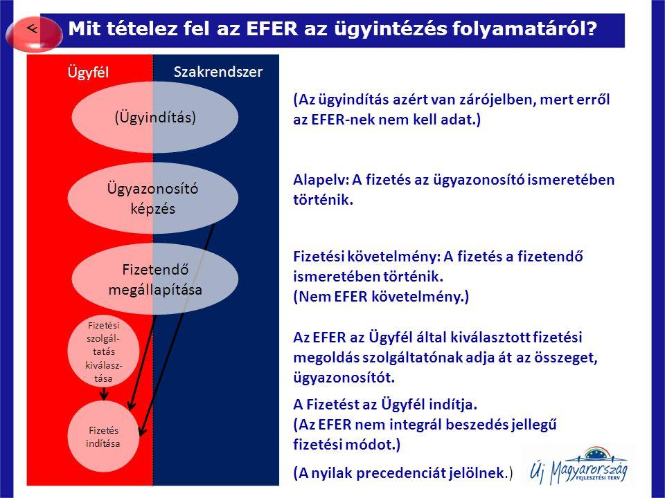 Mit tételez fel az EFER az ügyintézés folyamatáról