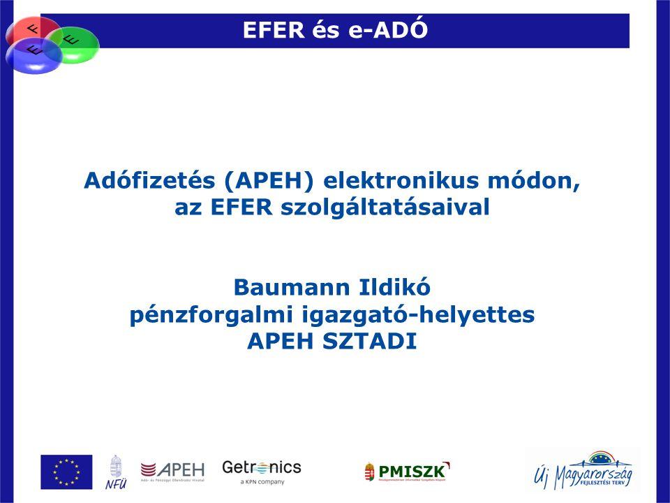 Adófizetés (APEH) elektronikus módon, az EFER szolgáltatásaival