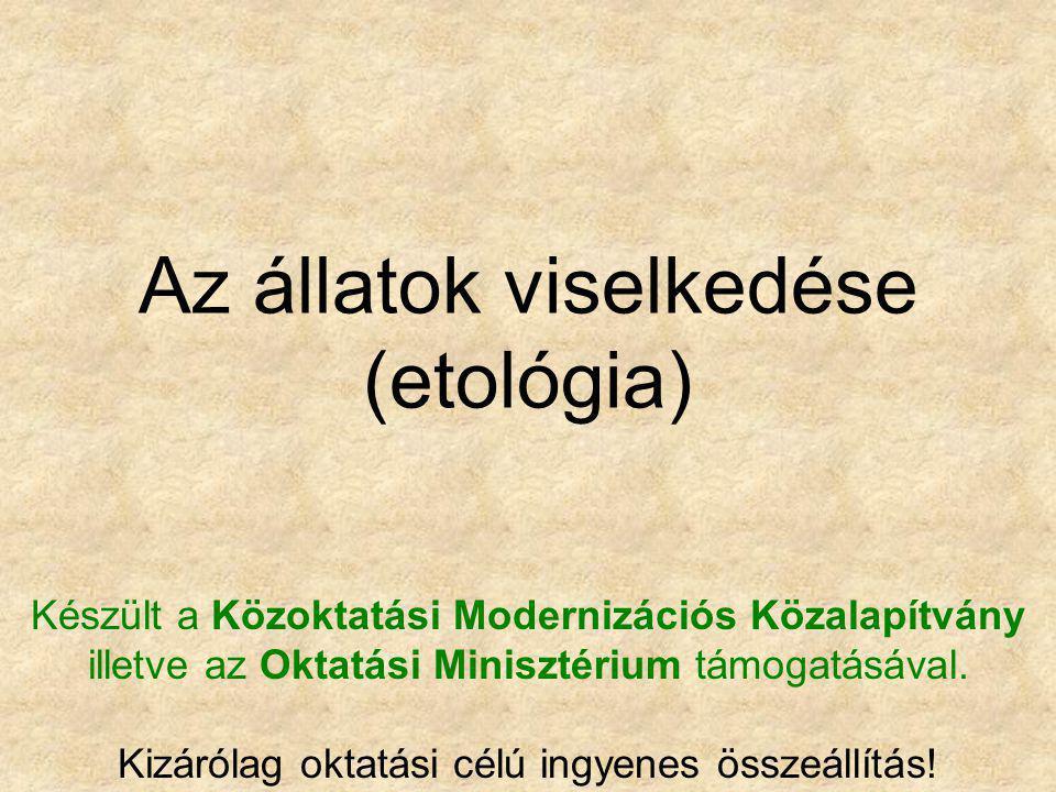 Az állatok viselkedése (etológia)
