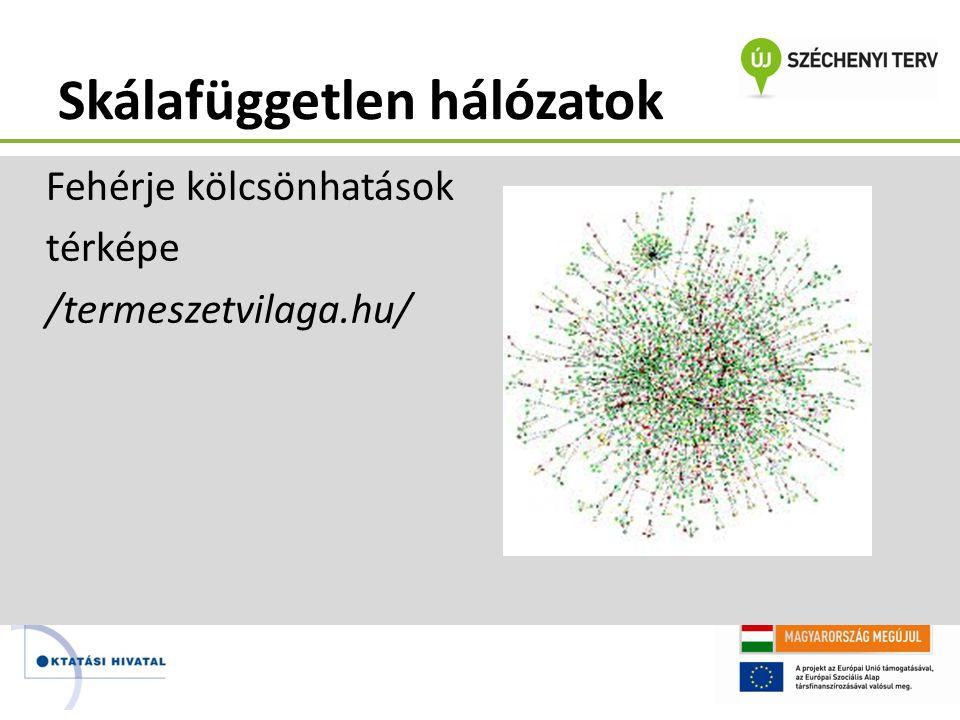 Skálafüggetlen hálózatok