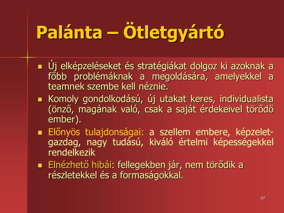Palánta – Ötletgyártó Új elképzeléseket és stratégiákat dolgoz ki azoknak a főbb problémáknak a megoldására, amelyekkel a teamnek szembe kell néznie.