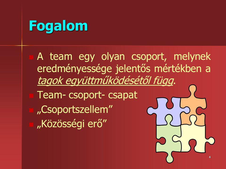 Fogalom A team egy olyan csoport, melynek eredményessége jelentős mértékben a tagok együttműködésétől függ.