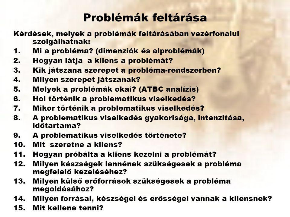 Problémák feltárása Kérdések, melyek a problémák feltárásában vezérfonalul szolgálhatnak: Mi a probléma (dimenziók és alproblémák)