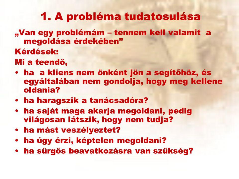 1. A probléma tudatosulása