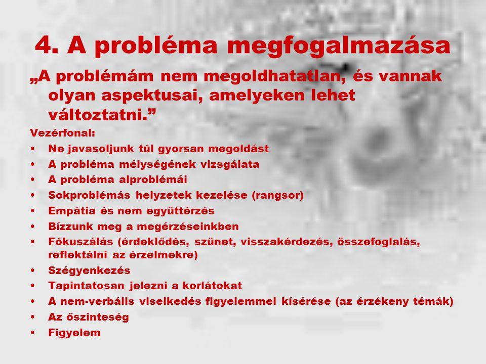 4. A probléma megfogalmazása