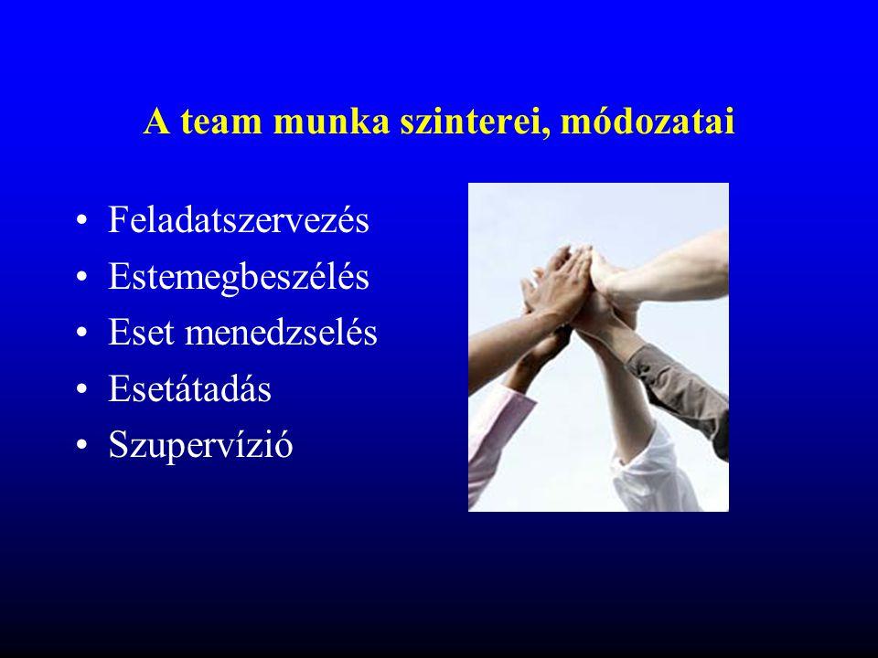 A team munka szinterei, módozatai