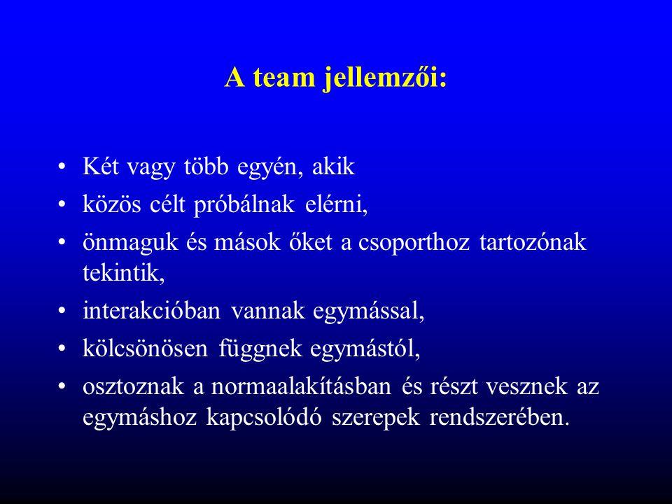 A team jellemzői: Két vagy több egyén, akik
