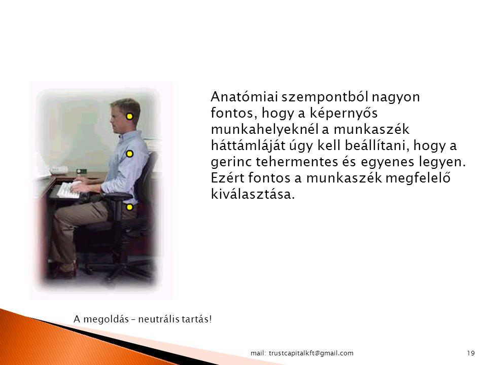 Anatómiai szempontból nagyon fontos, hogy a képernyős munkahelyeknél a munkaszék háttámláját úgy kell beállítani, hogy a gerinc tehermentes és egyenes legyen. Ezért fontos a munkaszék megfelelő kiválasztása.