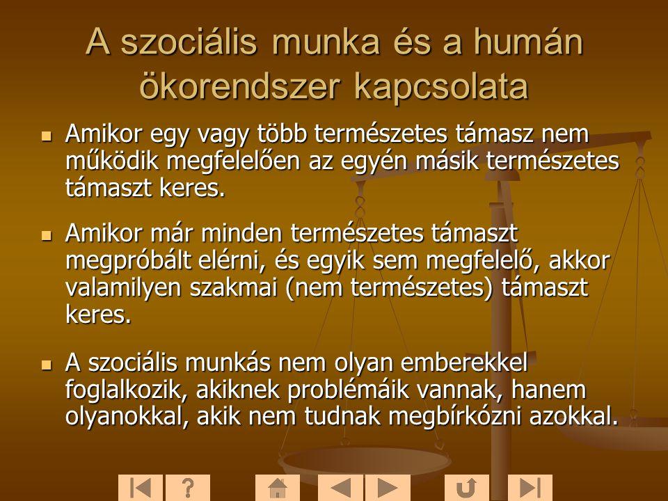 A szociális munka és a humán ökorendszer kapcsolata