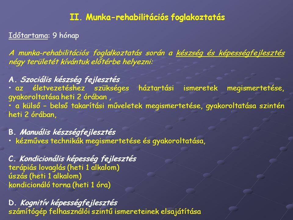 II. Munka-rehabilitációs foglakoztatás