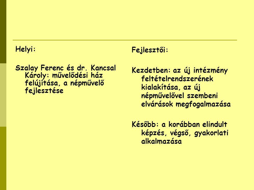 Helyi: Szalay Ferenc és dr. Kancsal Károly: művelődési ház felújítása, a népművelő fejlesztése. Fejlesztői: