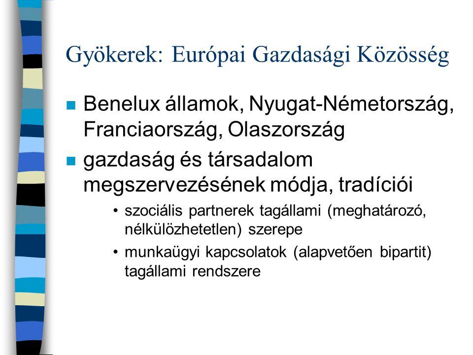 Gyökerek: Európai Gazdasági Közösség