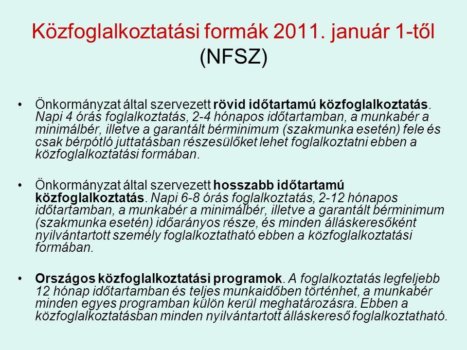 Közfoglalkoztatási formák 2011. január 1-től (NFSZ)