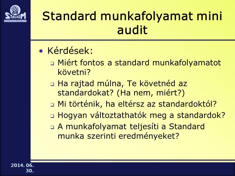 Standard munkafolyamat mini audit